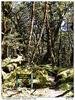 Opouštíme Fiordland National Park