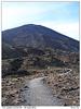 Cesta k Mt Ngauruhoe