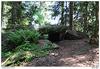 Kbílský dolmen