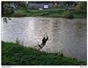 Lanovka přes řeku
