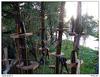 Lanový park Týnec